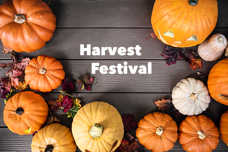 Harvest Festival with festive pumpkins